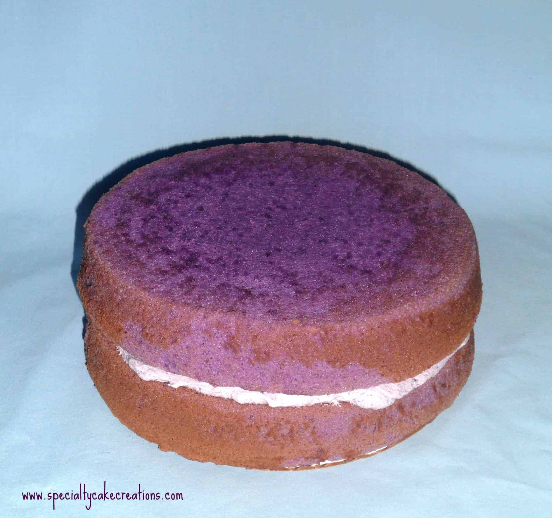 Naked Purple Ube Layer Cake
