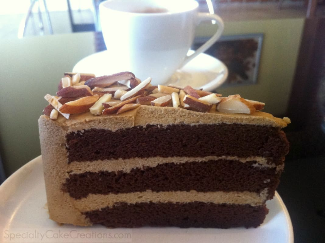 Mocha Cake | Dark Brown Hairs