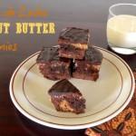 Dulce de Leche Peanut Butter Brownies