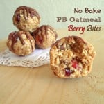 No Bake – PB Oatmeal Berry Bites