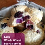 Easy Whole Wheat Berry Scones