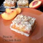 Healthier Whole Wheat Peach Crumb Bars