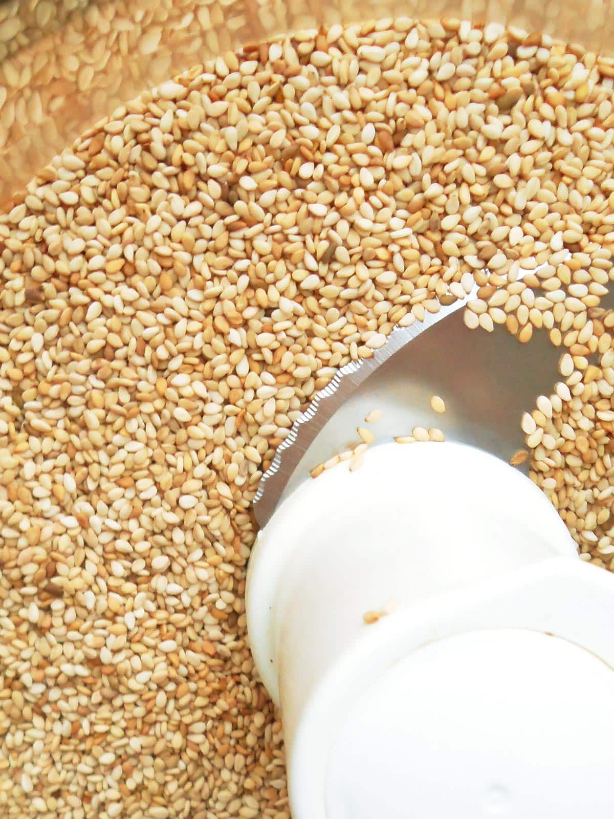 Sesame seeds in food processor