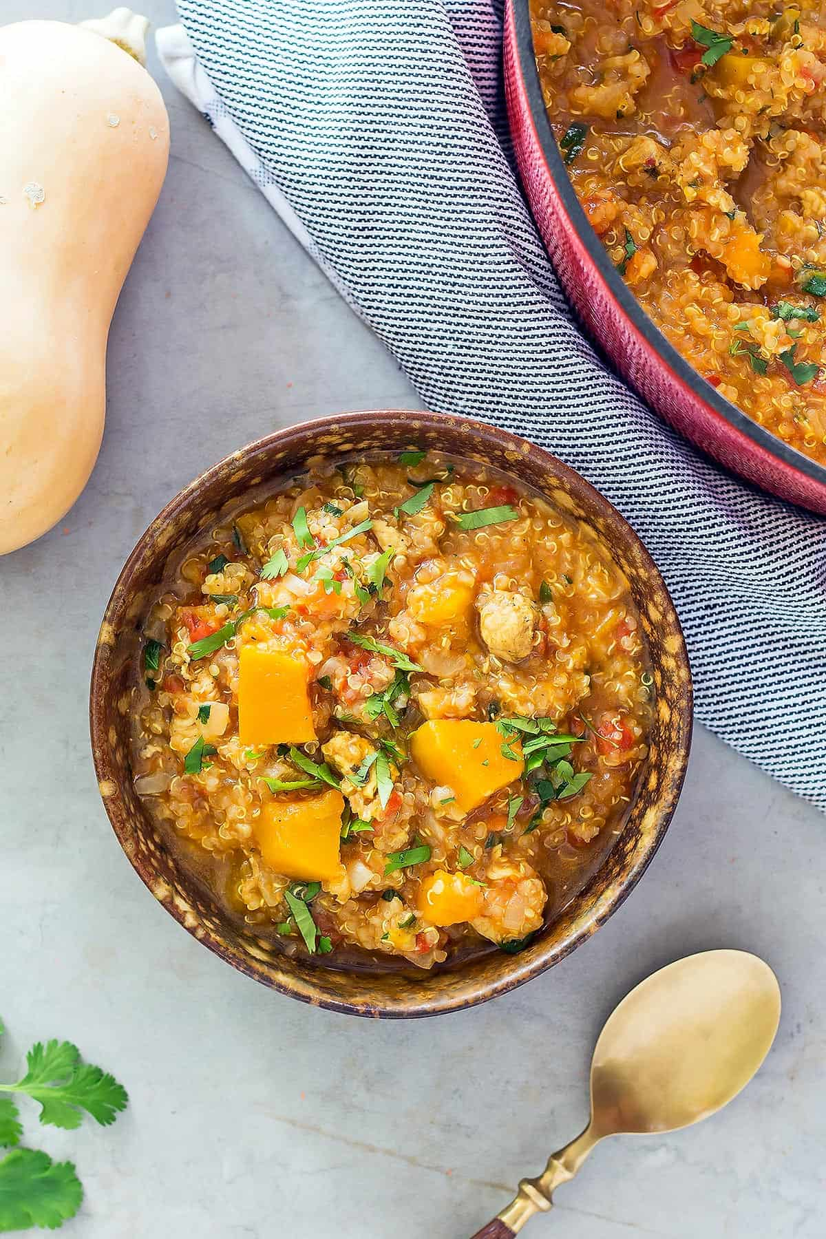 Instant Pot Butternut Squash Soup Chicken Quinoa