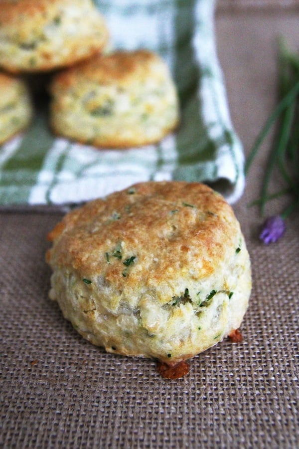 Cheese and Chive Sourdough Biscuits