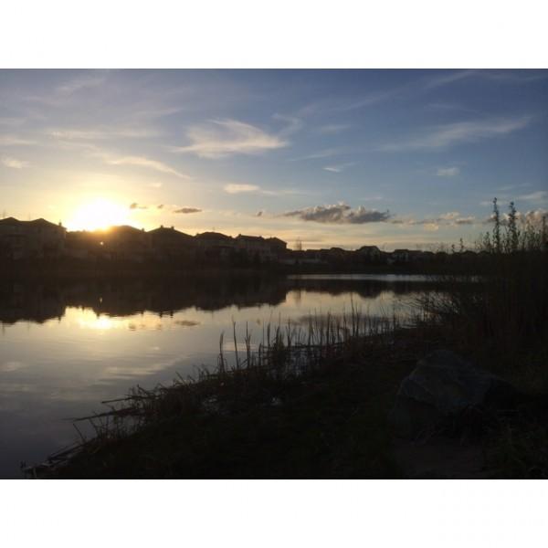 Calgary Sunset Over a Pond