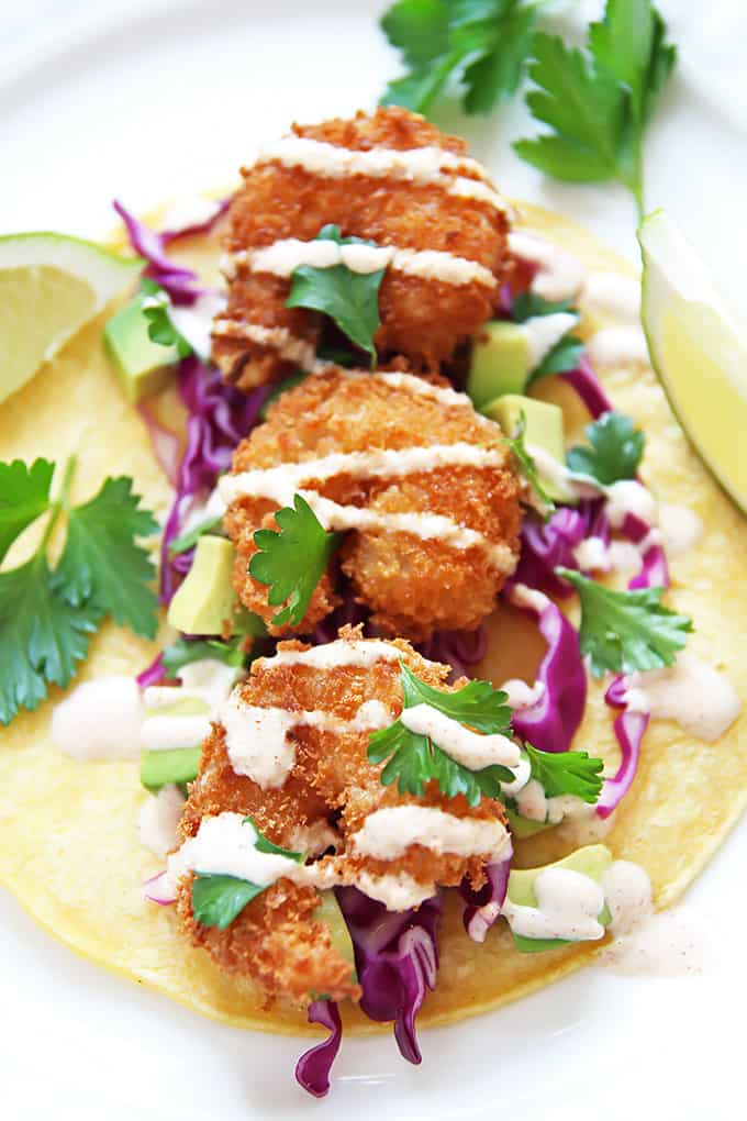 Crispy Panko-crusted shrimp tacos with red cabbage, avocado and a drizzle of spicy yogurt sauce.
