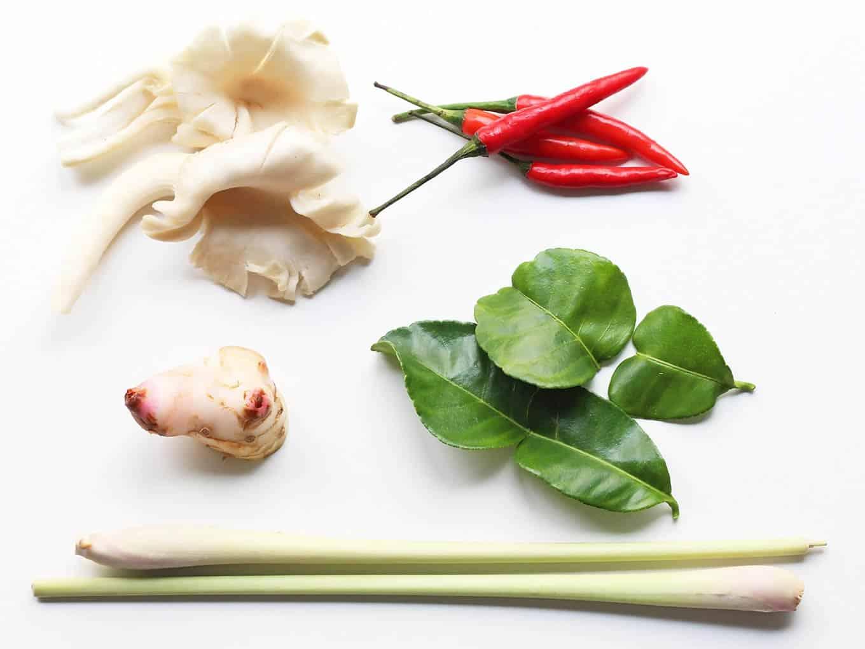 Ingredients for Tom Kha Gai