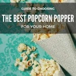 The Best Popcorn Poppers Guide