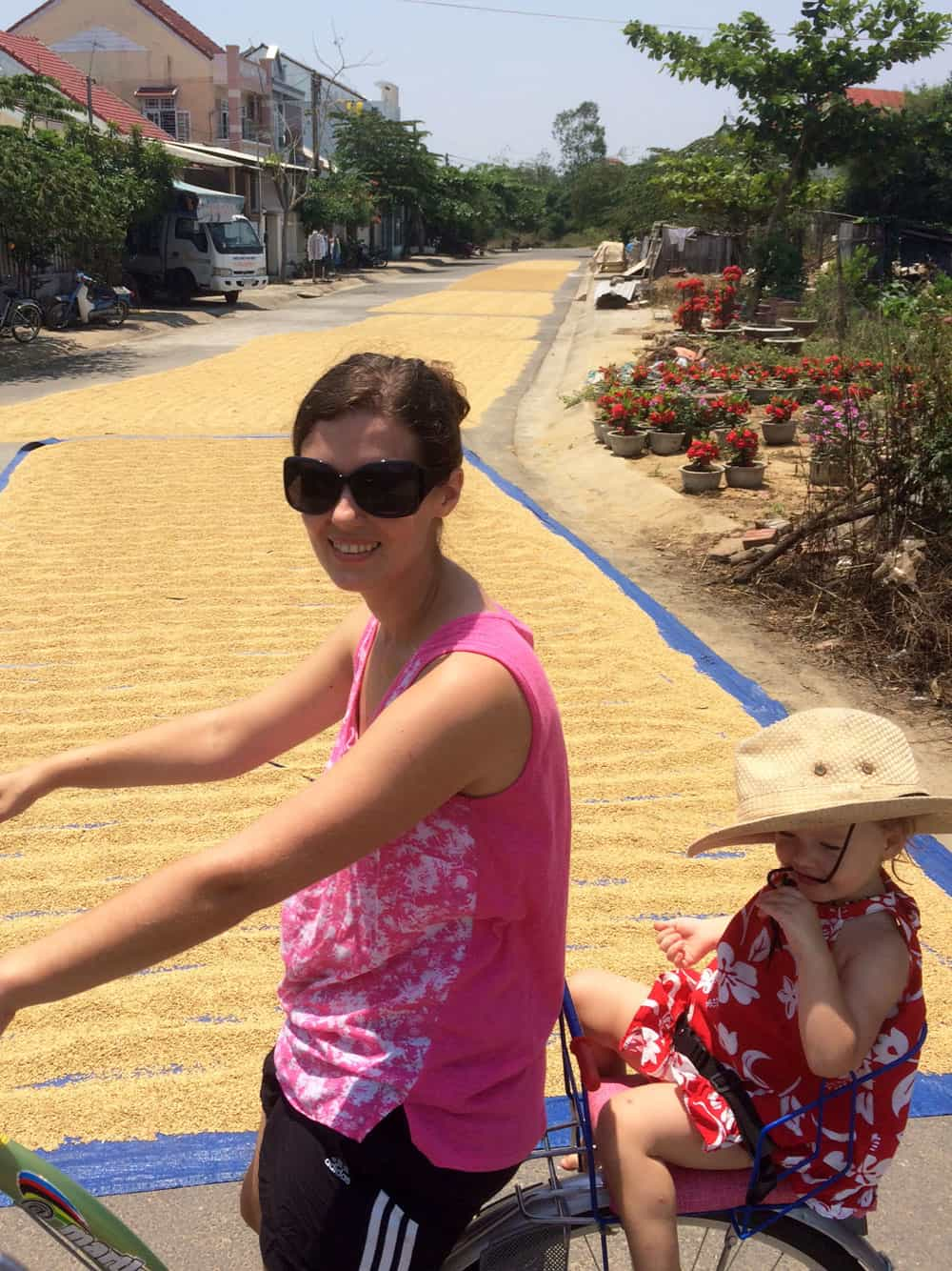 Rice Harvest in Hoi An
