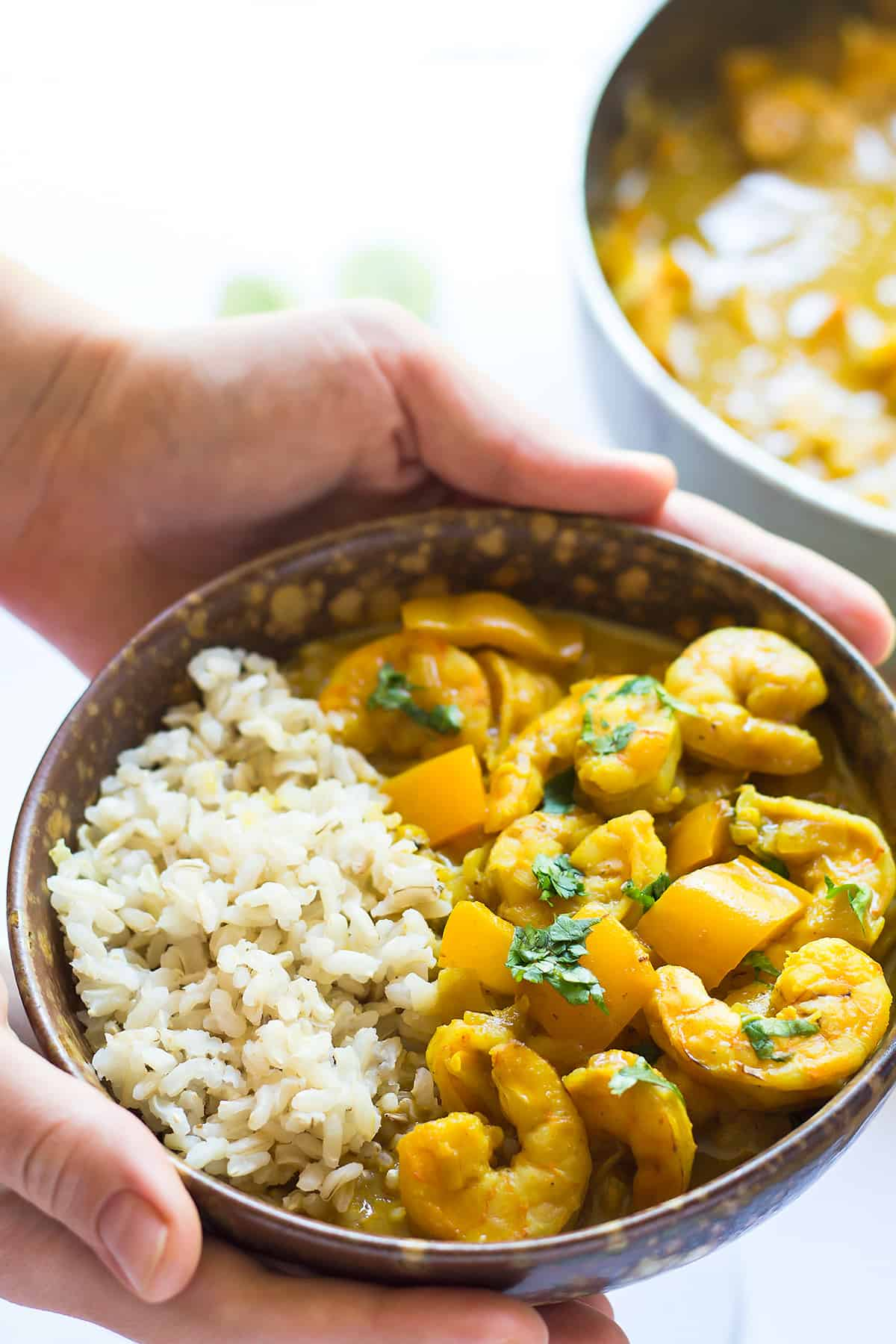 Coconut Curry Shrimp in Bowl