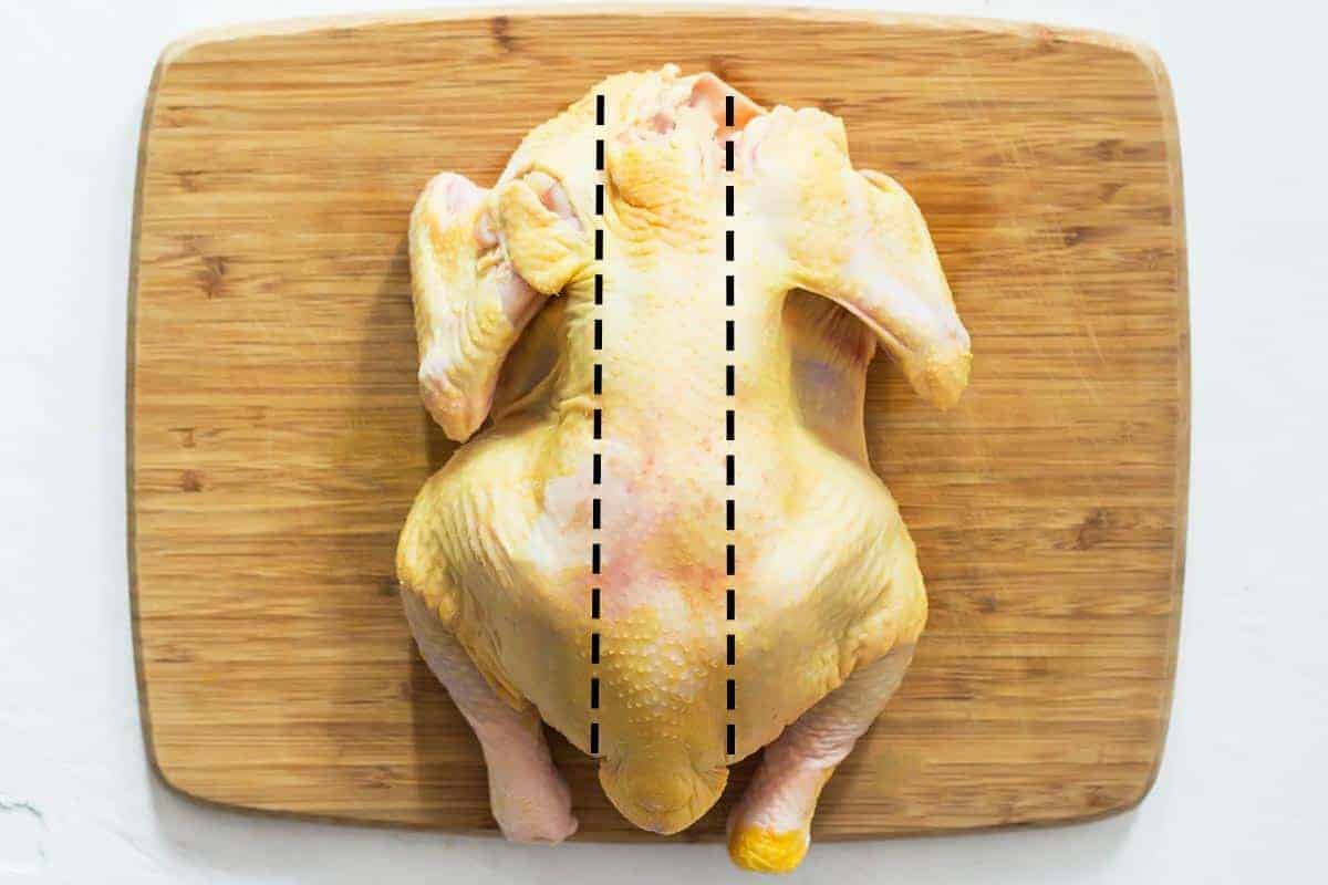 Chicken with spatchcock cut lines