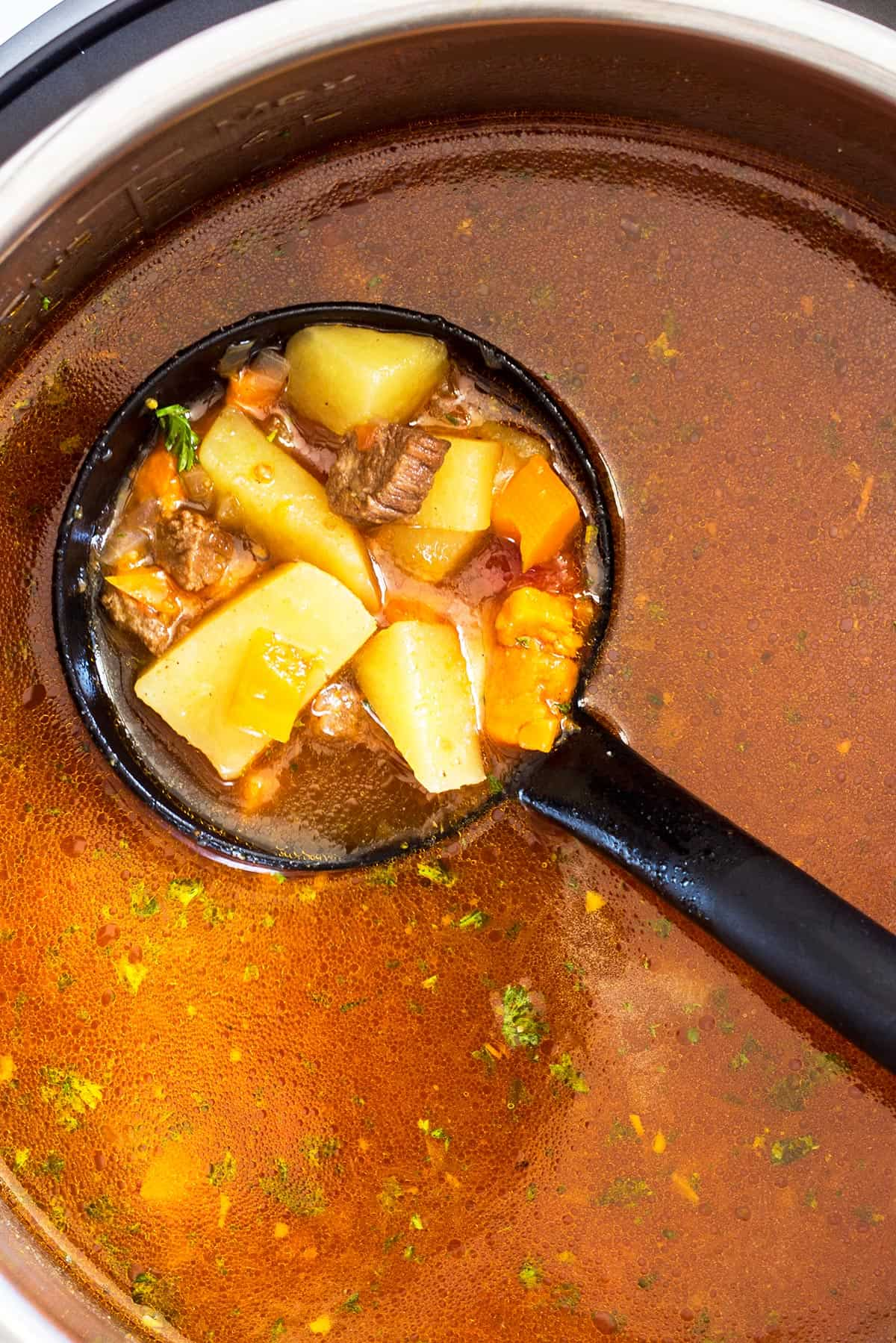 Ladle full of Vegetable Beef Soup