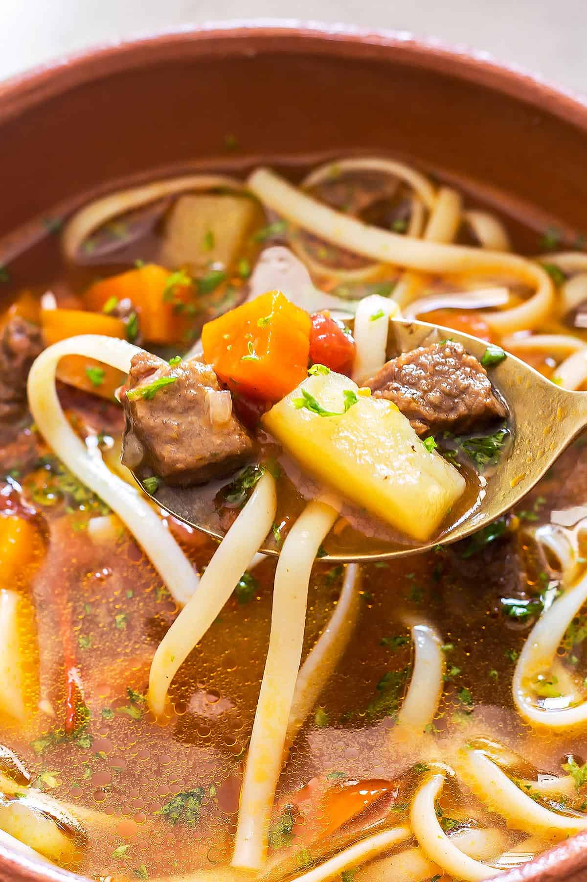Instant Pot Lagman in bowl and on spoon