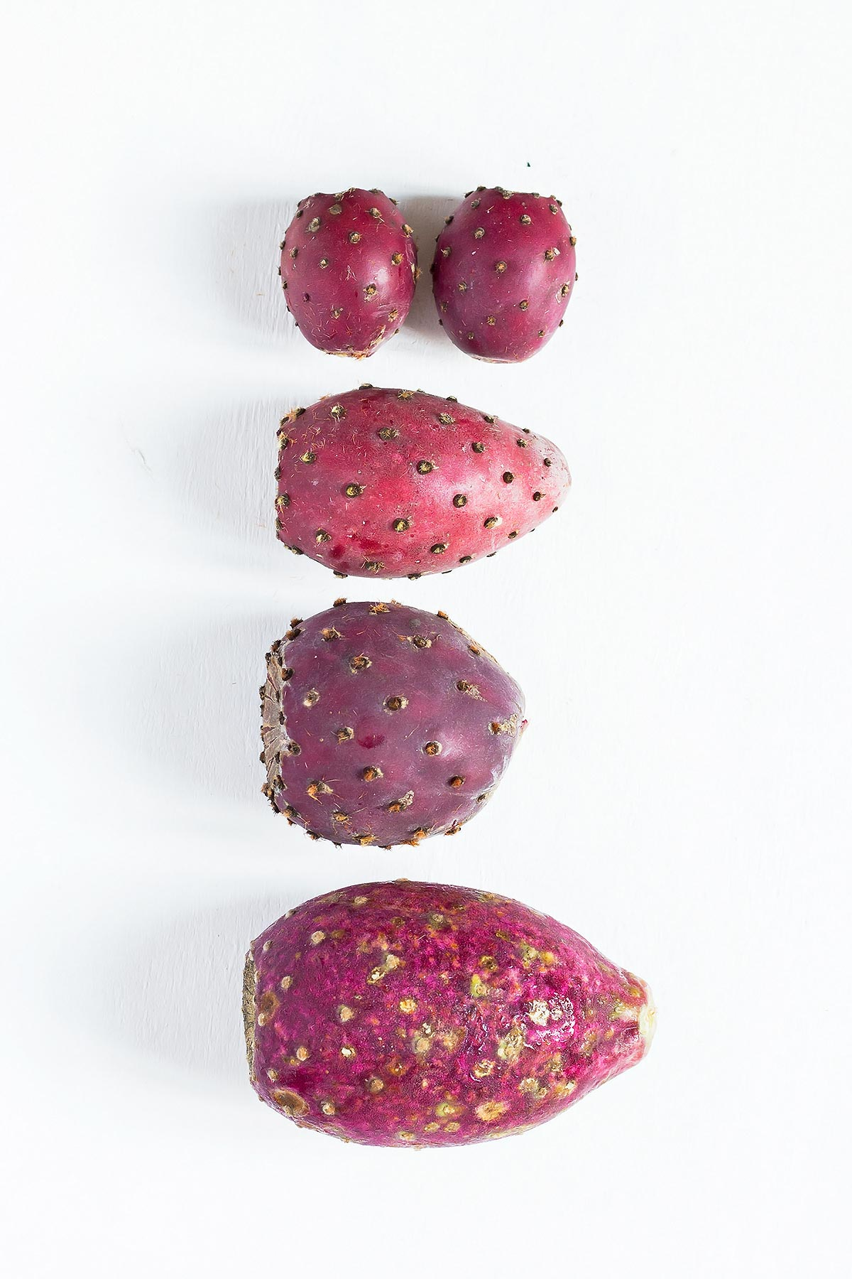 Different sized of prickly pears