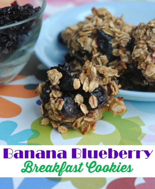 banana blueberry breakfast cookie recipe